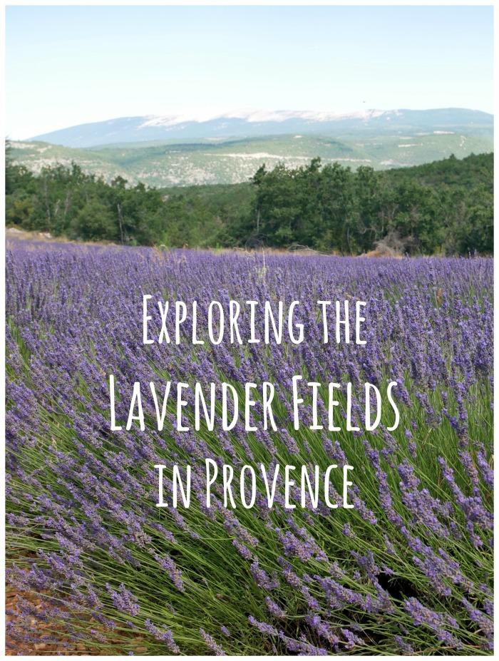 lavender.blog